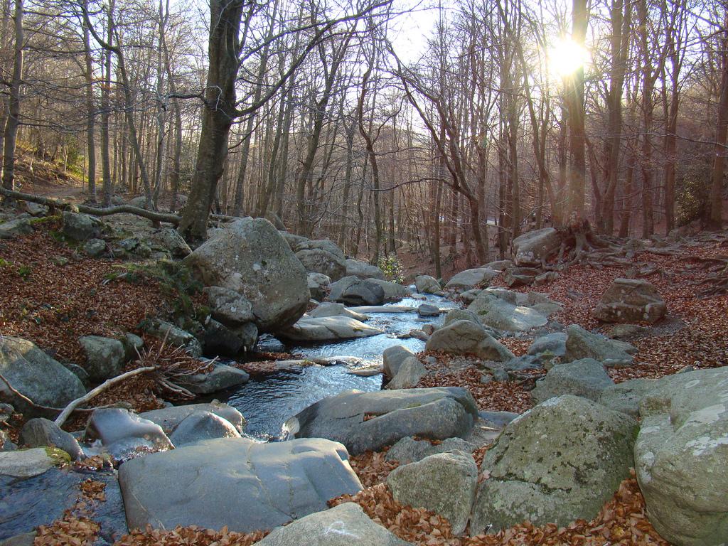 Desconecta en parques naturales de espa a for Piscinas del montseny