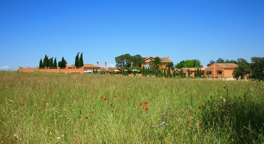 Hoteles con jardín valdepalacios