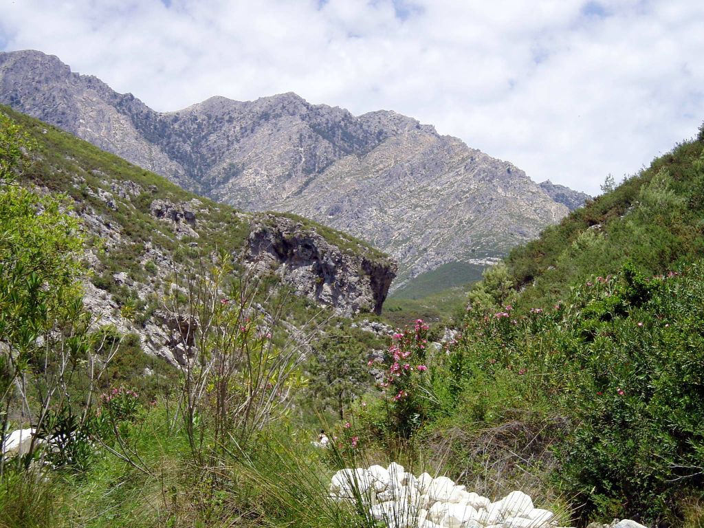 frigilania-sierra-almijara