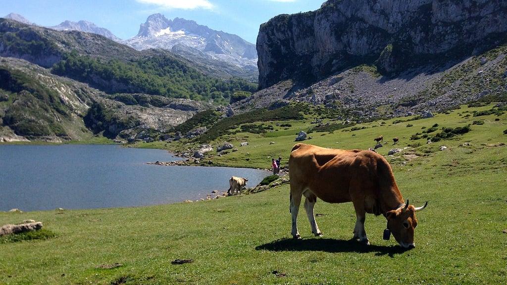 Lugares Imprescindibles Asturias Covadonga